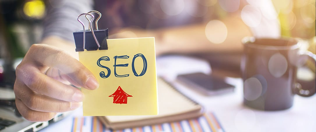 Who should do SEO? Is it an SEO Company in Dubai or your IT Team?