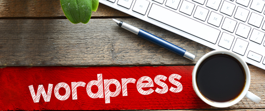 How to use WordPress as a Customized CMS